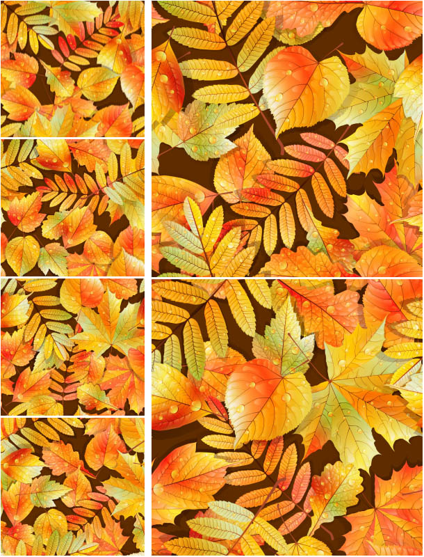 Autumn (fall) backgrounds filled with yellow and red leaves