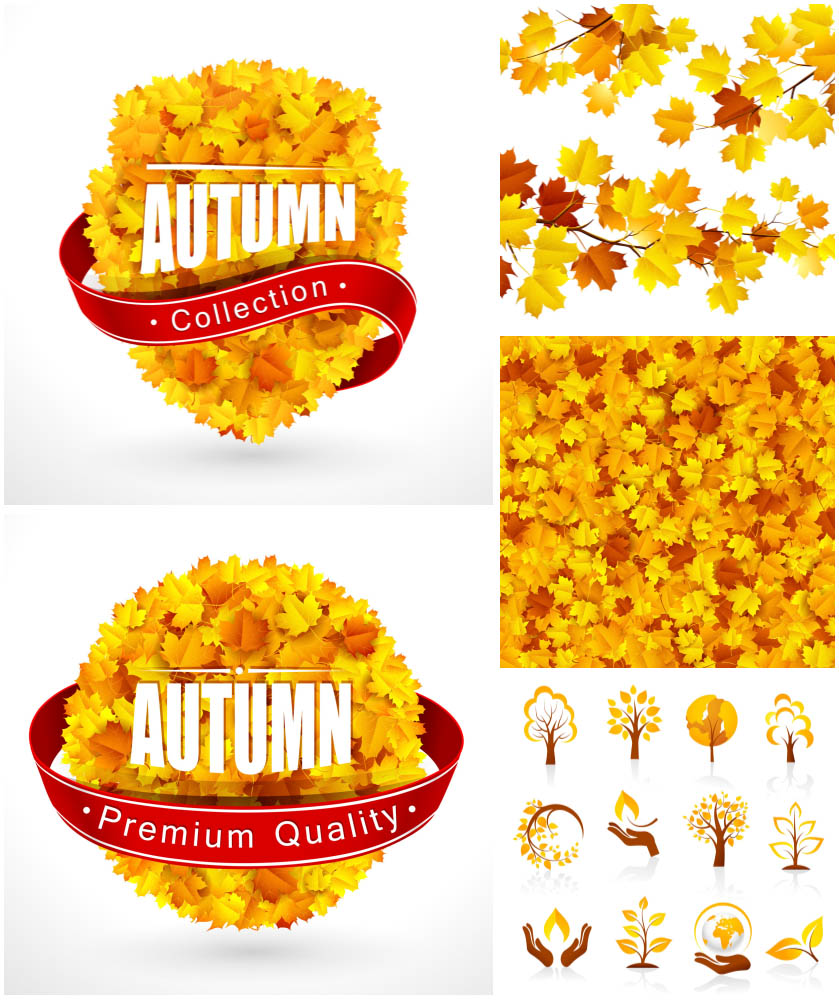 Autumn (fall) label Autumn leaves backgrounds Autumn icons