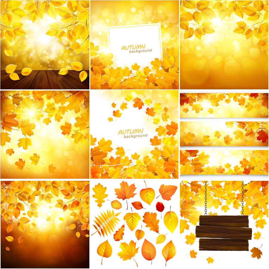 Glowing Autumn (fall) backgrounds. golden autumn leaves
