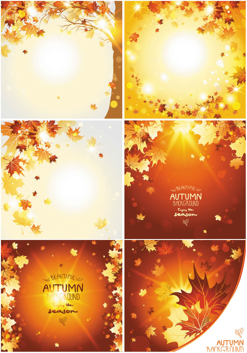 Nice and shiny Autumn (fall) backgrounds with leaves