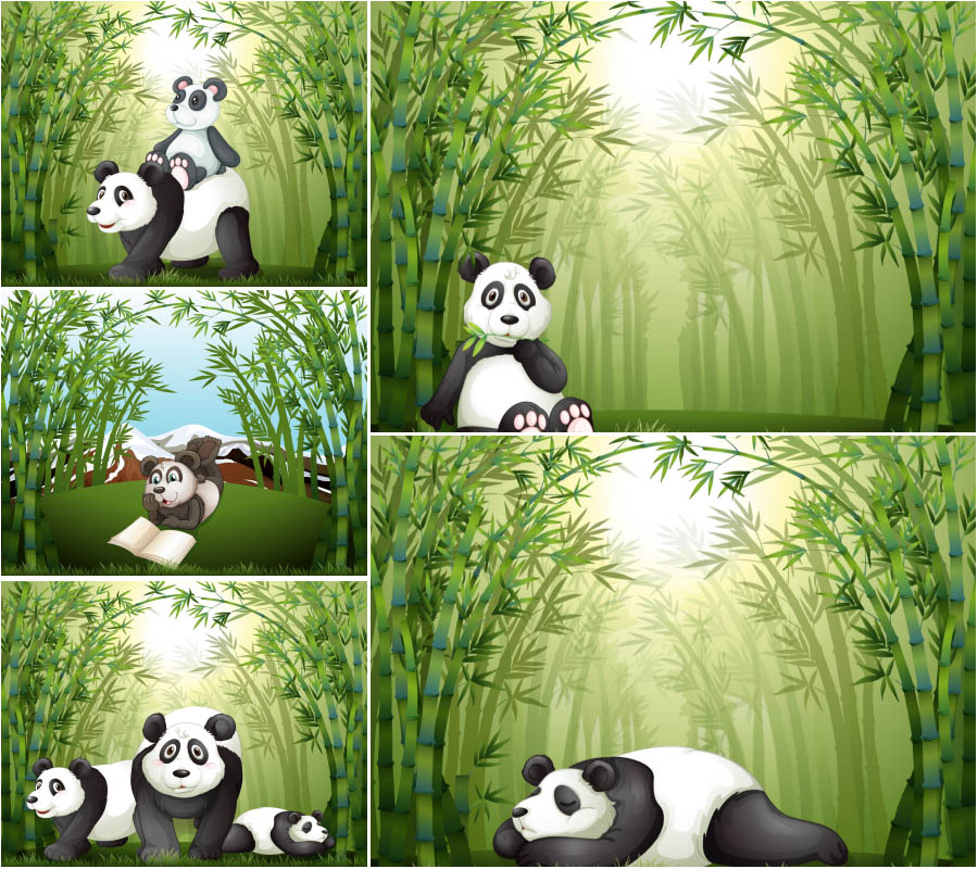 Panda in the green jungle