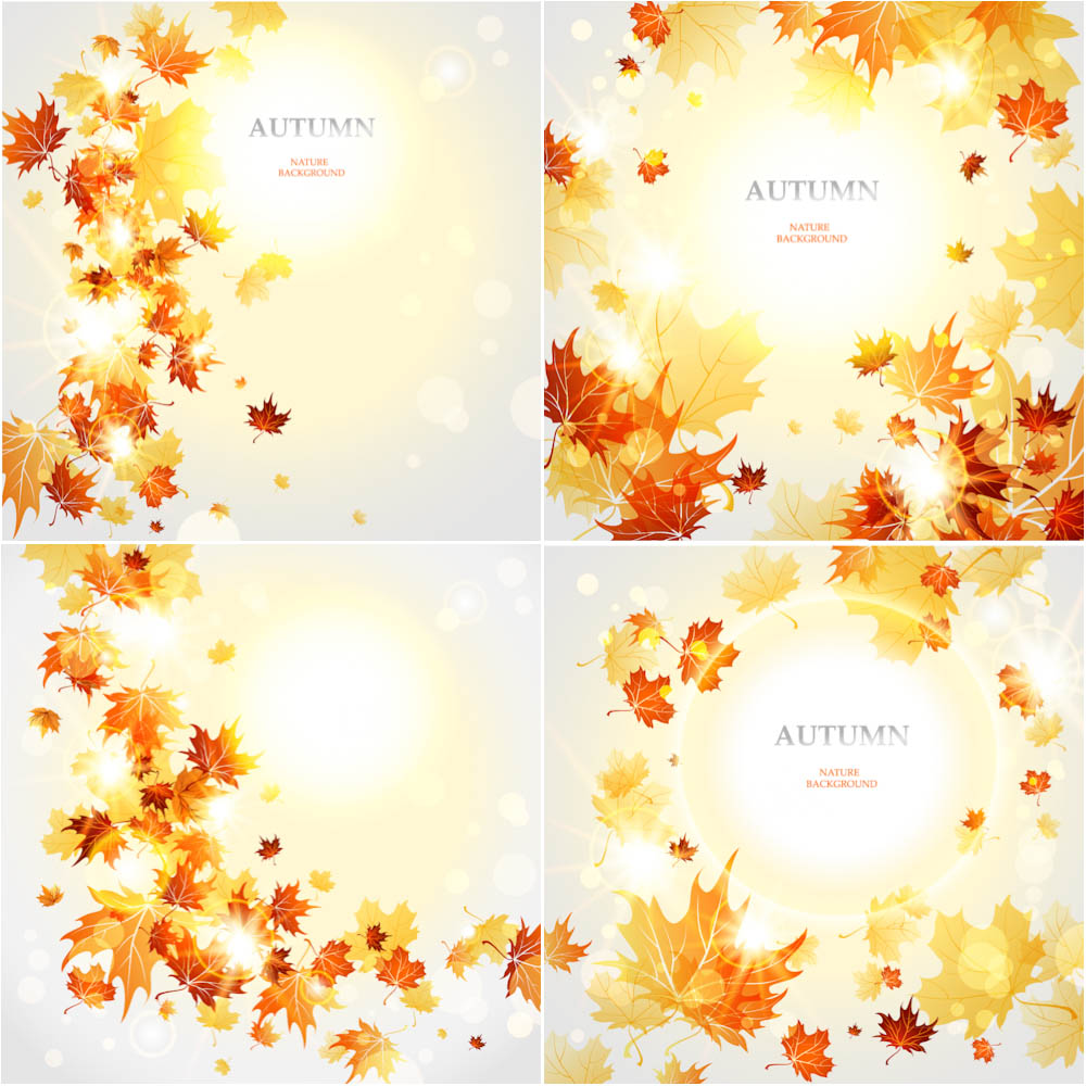 Professional live beautiful autumn (fall) backgrounds with yellow and red shiny leaves