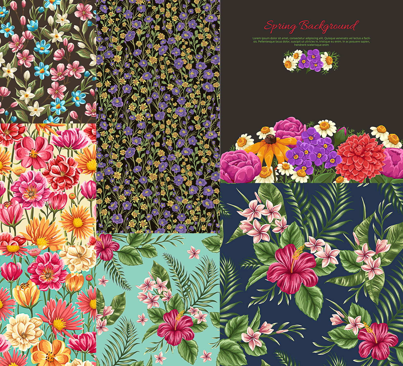 Spring floral seamless patterns vector