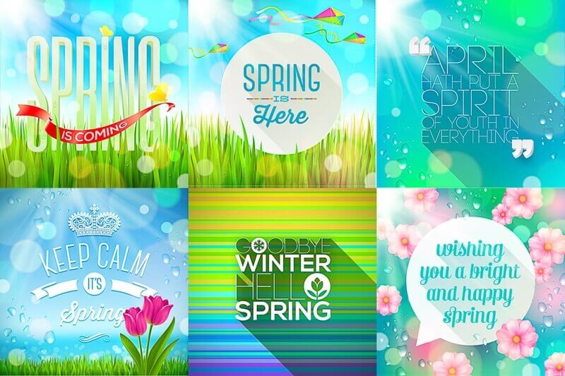 Spring backgrounds with flowers and sunshine vector
